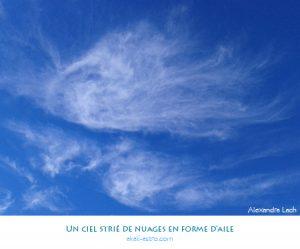 Un ciel strié de nuages en forme d'aile