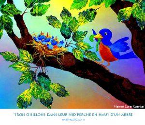 Trois oisillons dans leur nid perché au haut d'un arbre