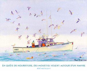 En quête de nourriture, des mouettes volent autour d'un navire