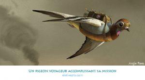 Un pigeon voyageur accomplissant sa mission