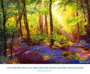 Un chemin dans les bois baigné d'une lumière multicolore