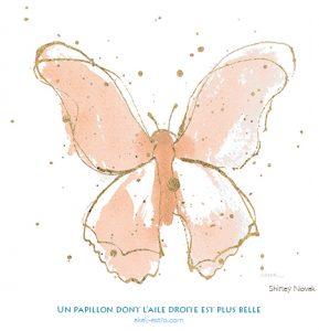 Un papillon dont l'aile droite est plus belle