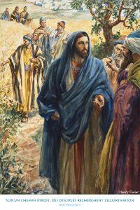 Sur un chemin étroit, des disciples recherchent l'illumination